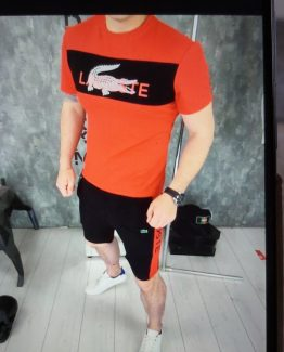 Мужской спортивный костюм летний Lacoste 000.4891 фото