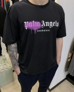 Мужская футболка PALM ANGELS черная 000.5122 фото